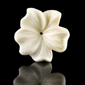 25mm Blüte  in elfenbeinfarben